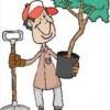 E' disponibile la graduatoria finale a seguito della selezione di un Giardiniere – Manutentore